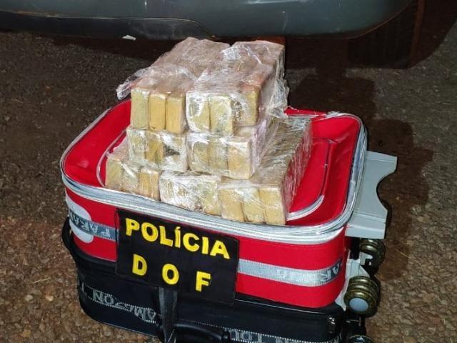Maconha estava acondicionada em pacotes e distribuída em duas malas (Foto: Divulgação/DOF)