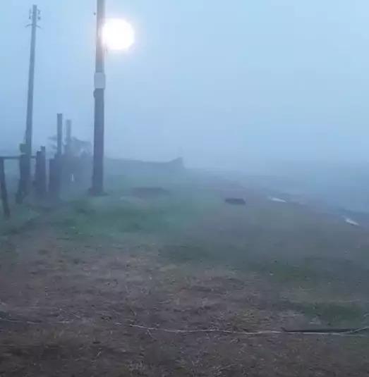 Manhã totalmente encoberta pela neblina em Antônio João, no sul do Estado (Foto: Direto das Ruas)
