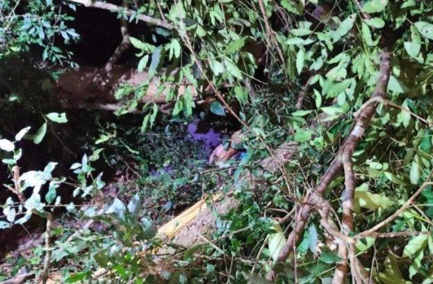 Vítima foi encontrada morta debaixo de árvore