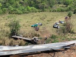Caminhão desceu a ribanceira; outros motoristas recolheram alimentos espalhados no local (Foto: Direto das Ruas)