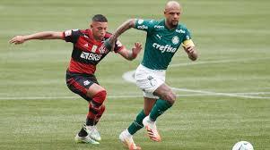 Felipe Melo, volante do Palmeiras, corre atrás de atacante do Flamengo (Foto: Divulgação)