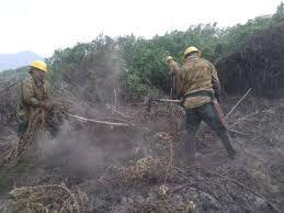 Brigadistas do PrevFogo são acionados em demanda sazonal, sempre a partir de junho, quando os incêndios florestais se intensificam. Ideia é ter grupo permanente de pronta resposta. (Foto: PrevFogo)