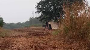 Terra preparada para plantio e barraco em área de preservação no Itamarati I
