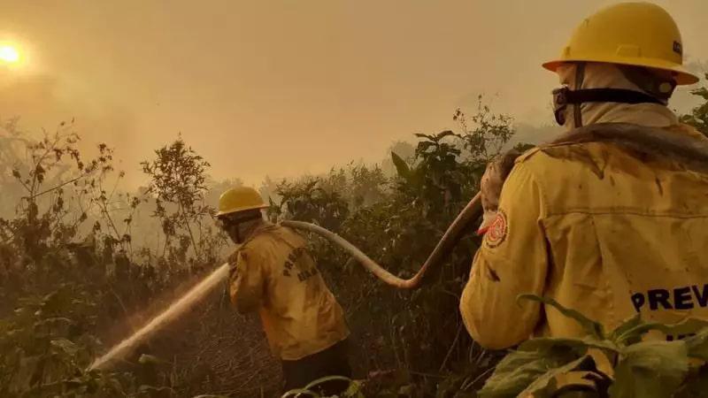 Equipe do Prevfogo em atuação nos incêndios floretais no Pantanal, no ano passado (Foto/Divulgação)